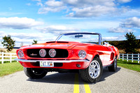 67 Shelby GT500 Mustang